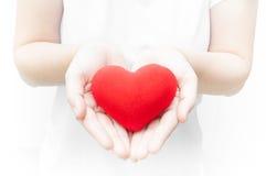 妇女藏品和保护给在白色背景特写镜头的红色心脏形状 免版税图库摄影