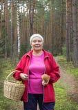 妇女被找到的蘑菇在杉木森林里 库存照片