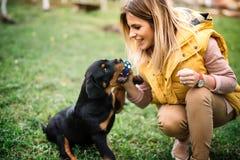 妇女训练和使用与在草的小狗,在公园 Rottweiler狗小狗细节 免版税库存图片