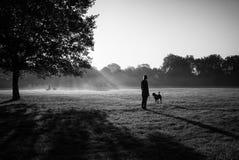 妇女走与一条狗在有另一条狗的一个公园在背景 免版税库存图片