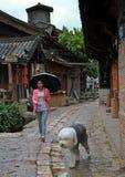 妇女走与在街道上的狗在丽江 库存照片