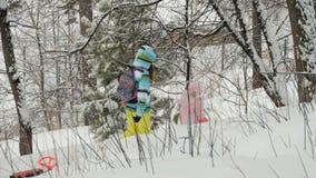 妇女走与孩子在冬天森林里 股票录像