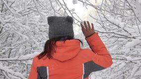 妇女走在一个美妙的冬天森林森林的,脖子,接触树枝,雪落的beautifull 影视素材