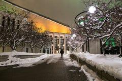 妇女走在多雪的胡同的晚上的往在街市区段的地方des艺术,蒙特利尔,魁北克 库存照片