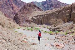 妇女走的沙漠 免版税库存照片