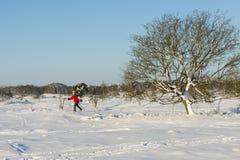 妇女越野滑雪 图库摄影