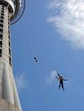 妇女跳跃从奥克兰天空塔的Bungy 免版税库存照片