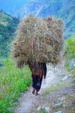 妇女运载的堆在她的干草  免版税库存照片