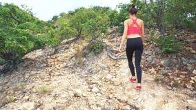 妇女远足者走 本质上 远足单独走在山风景的女孩 影视素材