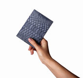 妇女递举行一灰色皮革walletcase,护照的,在desktable的白色的信用卡口袋 免版税库存图片