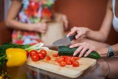妇女递准备在厨房概念烹调的晚餐,烹饪 免版税库存图片