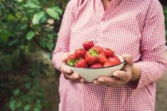 妇女递拿着一碗草莓 图库摄影