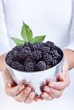 妇女递拿着在一个小的时段的黑莓 库存照片