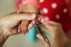 妇女递拿着手切开有飞剪机的小孩指甲盖的孩子 库存图片