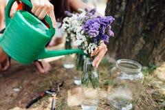 妇女递浇灌的花 免版税库存照片