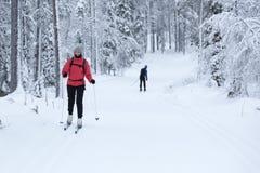 妇女速度滑雪在多雪的森林里 库存照片