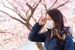 妇女遭受花粉过敏在佐仓树下 免版税库存照片
