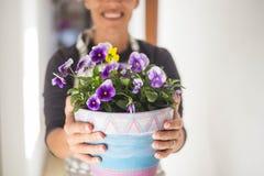妇女采取一个花瓶紫罗兰色花 库存照片