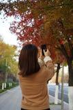 妇女采取在秋天的photoes 库存照片