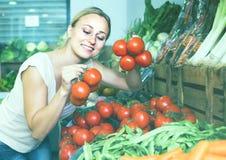 妇女采摘蕃茄 免版税库存图片