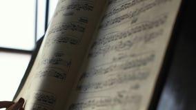 妇女钢琴演奏家特写镜头用两只手在白天移交音符 股票视频