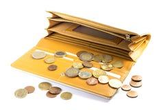 妇女钱包 图库摄影