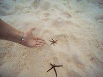 妇女陈列用她的手在海滩岸的海星水中 图库摄影
