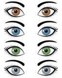 妇女集的眼睛 免版税库存图片