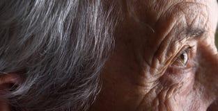 妇女面孔关闭 免版税库存照片
