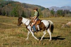 妇女骑乘马 库存图片
