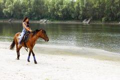 妇女骑沿河的一匹马 图库摄影