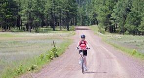 妇女骑自行车者乘坐森林公路 库存照片