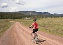妇女骑自行车者乘坐森林公路 免版税库存照片