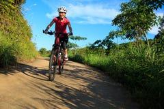 妇女骑自行车者骑马在森林足迹的登山车 免版税库存照片