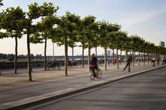 妇女骑自行车,并且男孩乘驾踩滑板 库存照片