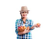 妇女,拿着篮子用苹果的被检查的衬衣 秋天收获 库存图片