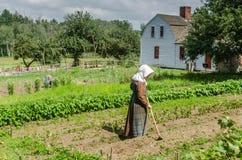 妇女从事园艺的-老Sturbridge村庄- Sturbridge, MA 库存图片