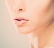 妇女嘴唇 库存照片