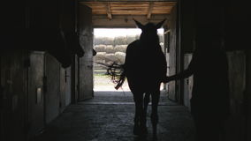 妇女主导的马槽枥 无法认出的女性骑师走与马在槽枥 正面图 影视素材