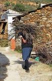妇女更旧的运载的木柴, Hurdes,卡塞里斯省,西班牙 免版税图库摄影