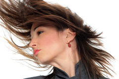 妇女画象有美丽的头发的 库存图片