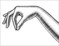 妇女` s下来手棕榈等高与少量手指 皇族释放例证