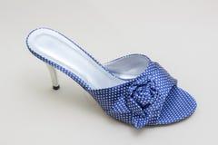 妇女` s在白色背景关闭的凉鞋鞋子 库存图片