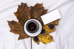 妇女` s床顶视图在冷气候的一懒惰星期日早晨 生活方式用咖啡 库存照片