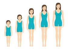 妇女` s身体成比例改变与年龄 女孩` s身体成长阶段 免版税库存图片