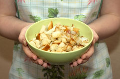 主妇绿色碗用油煎的油煎方型小面包片和葱 免版税库存照片
