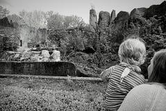 妈咪和BEBY在动物园里 免版税图库摄影