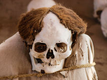 妈咪在Chauchilla考古学站点 库存照片
