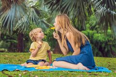 妈妈和儿子有一顿野餐在公园 吃健康果子-芒果 免版税库存照片