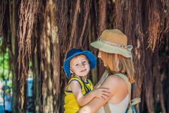 妈妈和儿子越南旅客的是在背景美丽的树与气生根 免版税库存照片